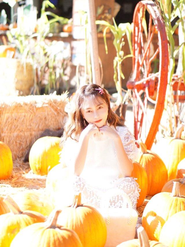 秋天的滤镜|南瓜的颜色 🎃🎃