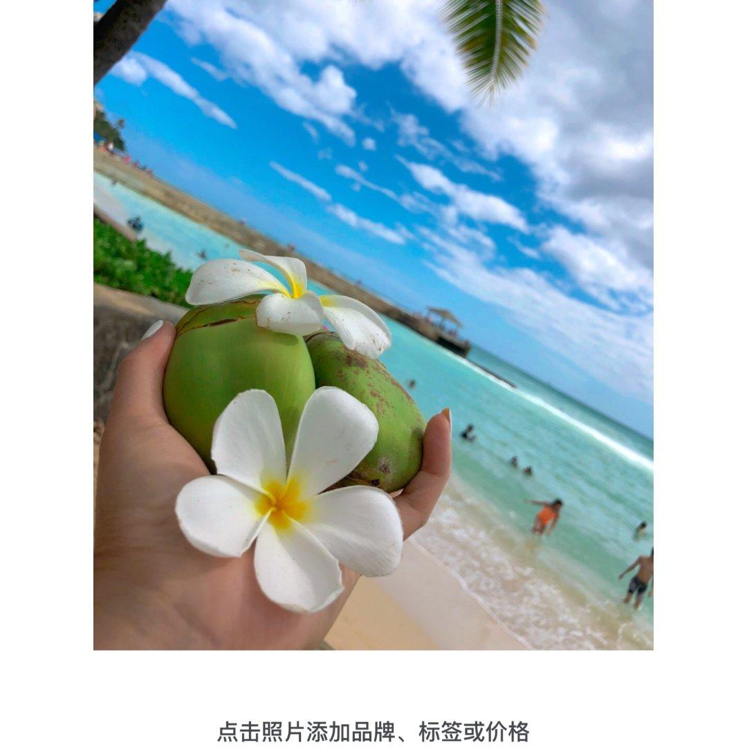 🏝夏威夷椰林树影风情🏖