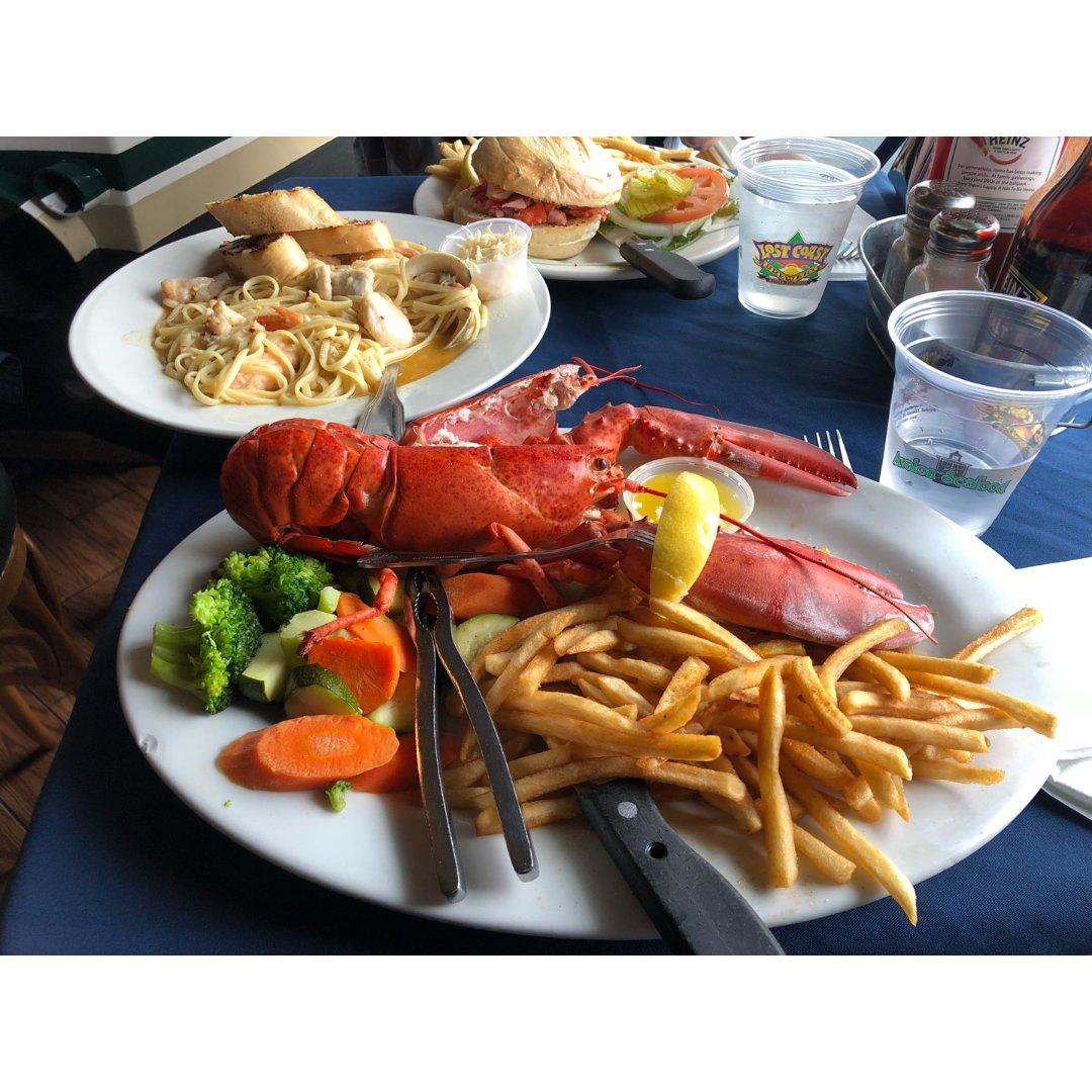 卡特琳娜岛的龙虾