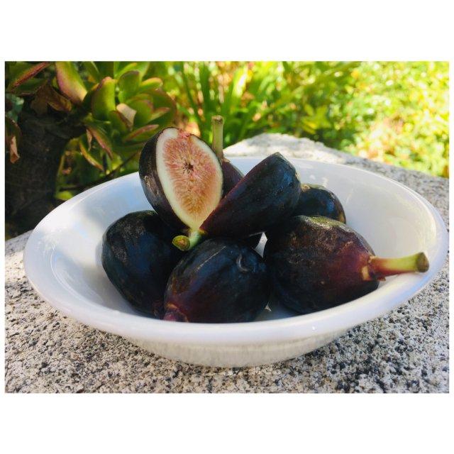 减肥故事#1 健康水果-无花果