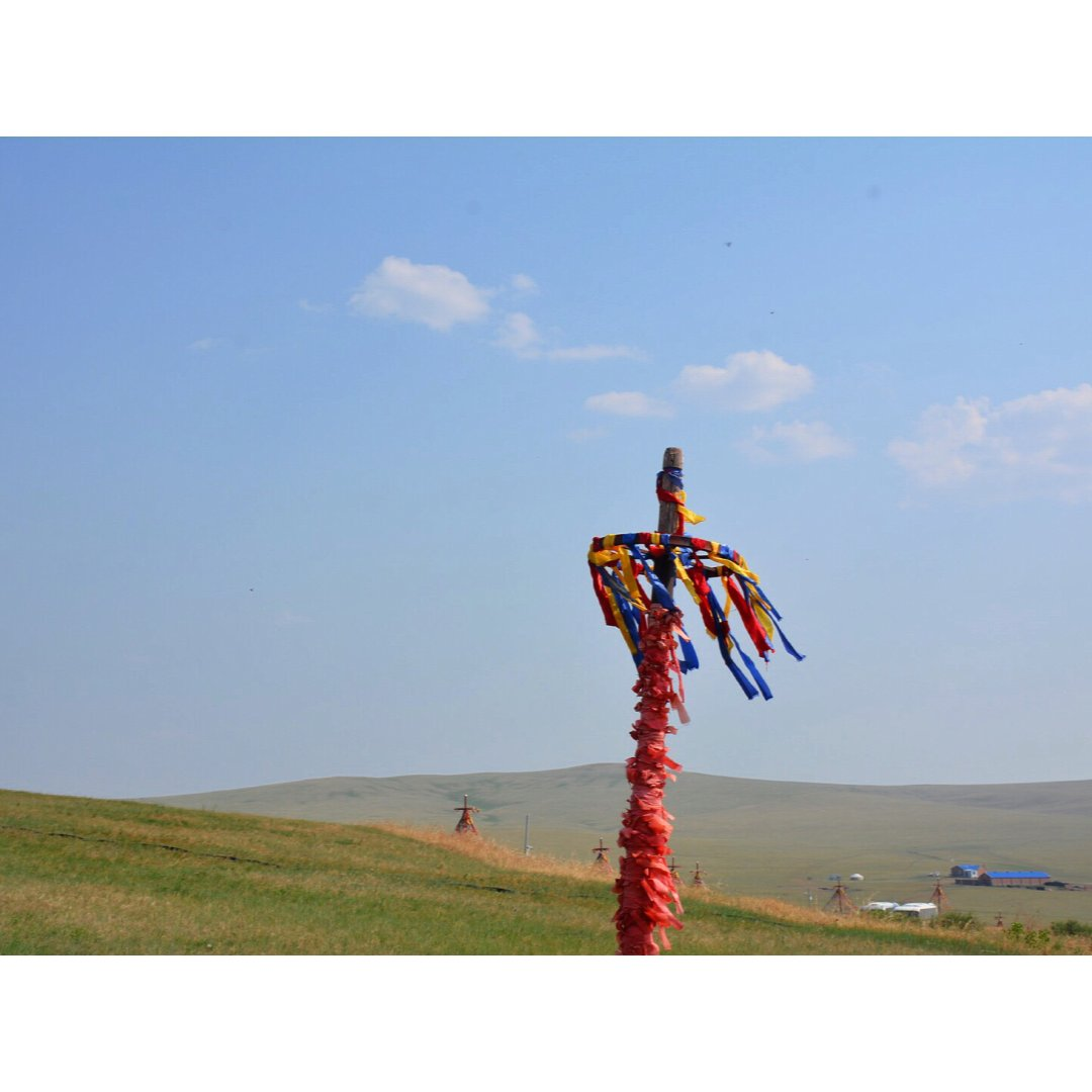 去年此时我在内蒙草原...