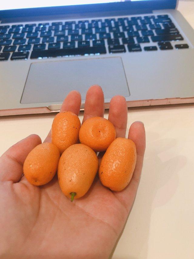 新年吃金橘呀