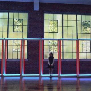 打卡纽约周边小众博物馆Dia:Beaco...
