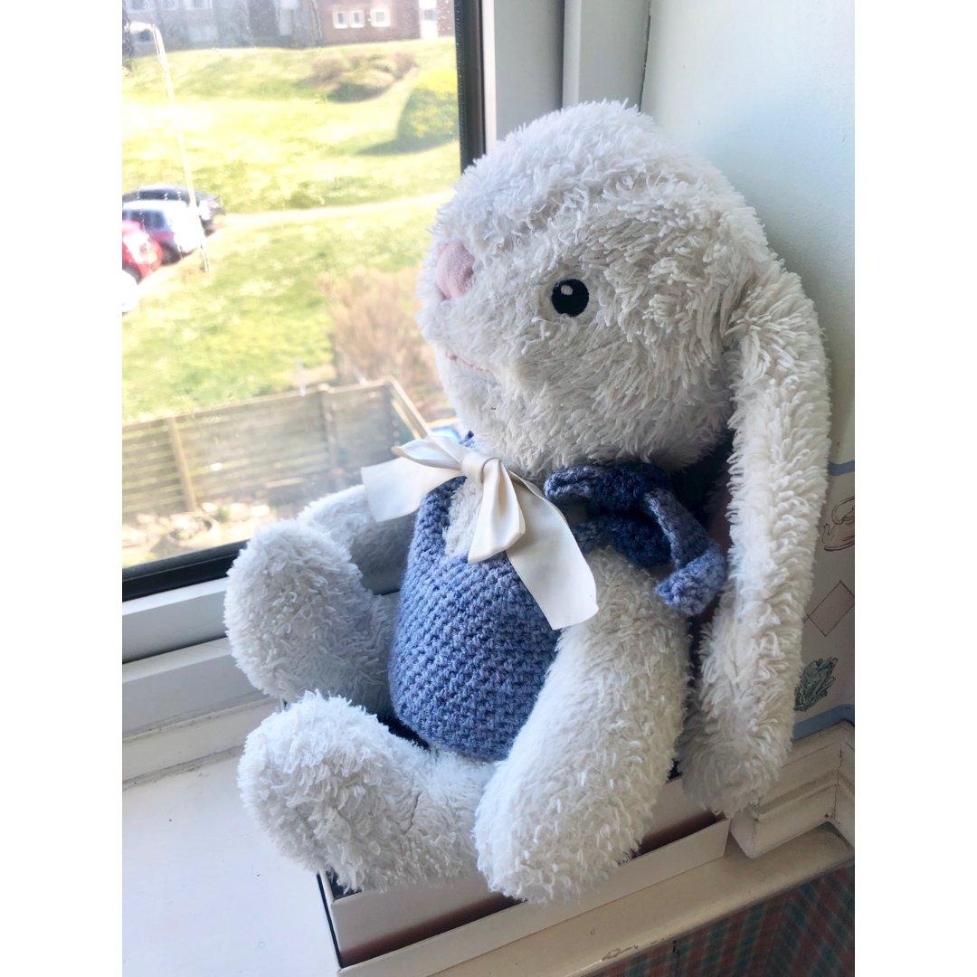 在家好无聊来给小兔兔做背心~~~