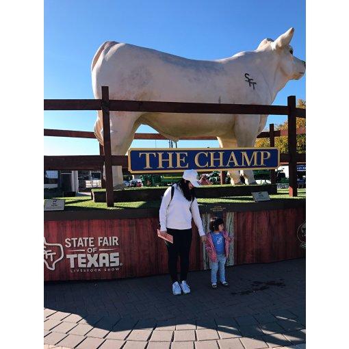 一年一度超火爆的大德州state fair