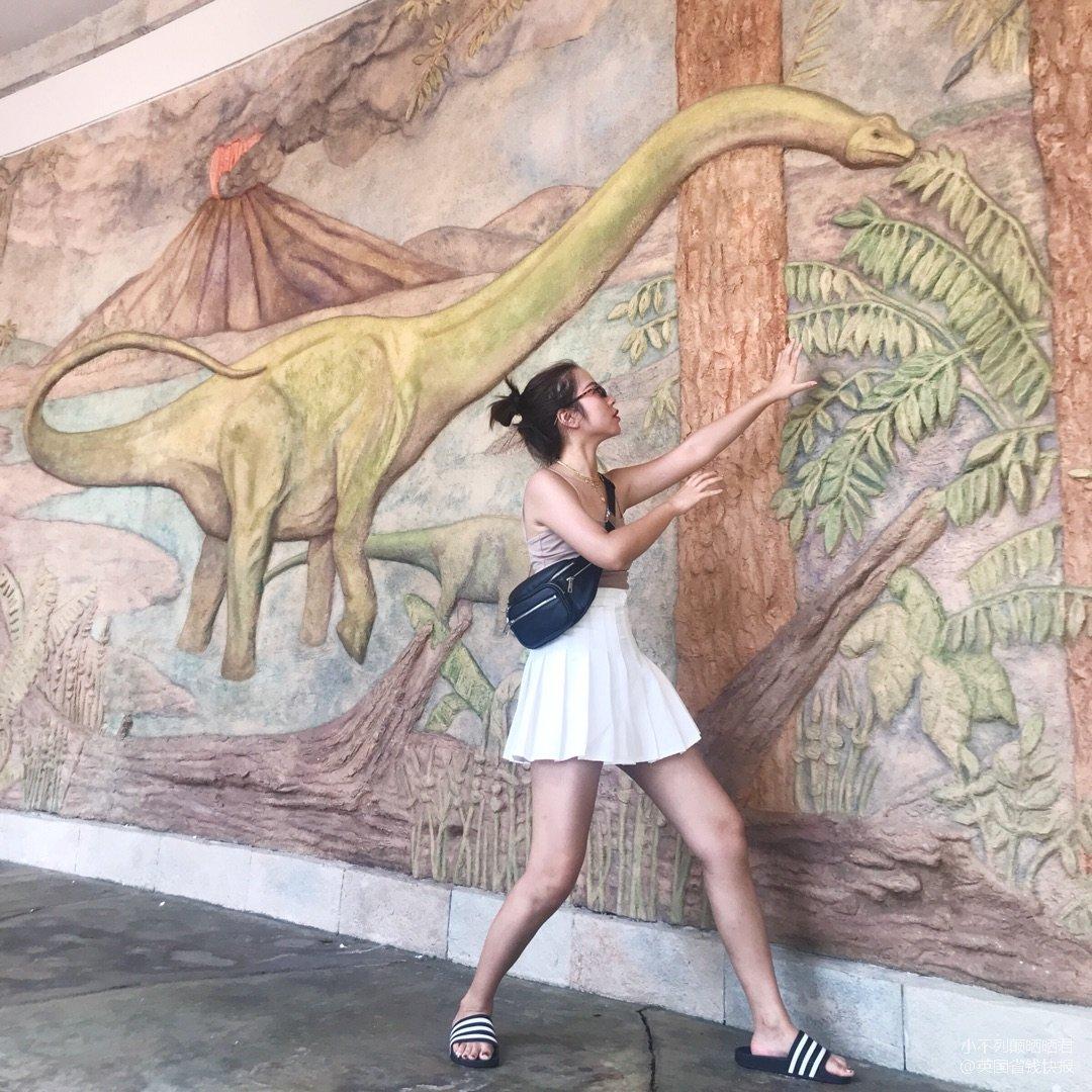 我爱恐龙!!🐲纪念今年夏天的第一件...