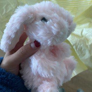 我的复活节兔兔🐰到啦...