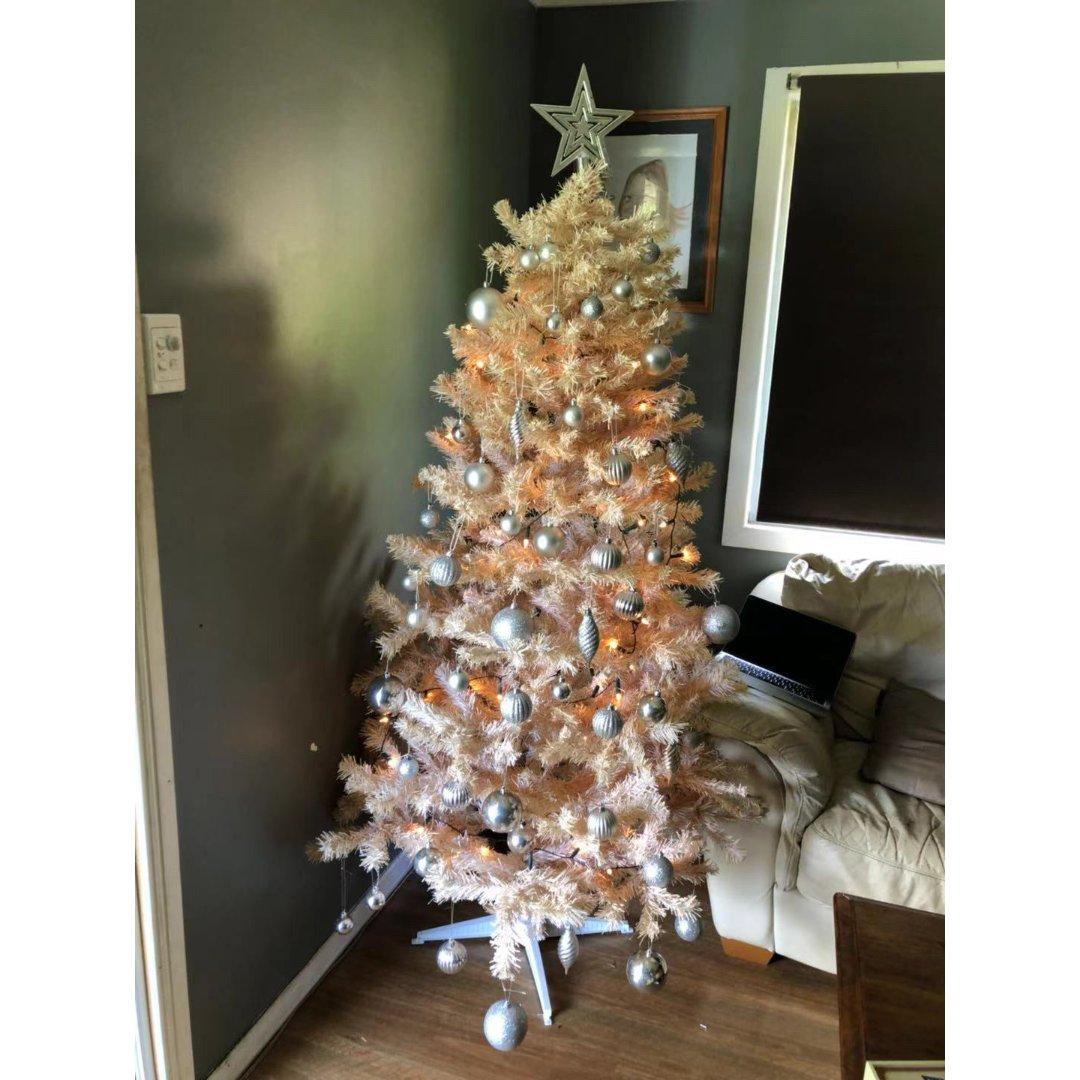 晒晒我家圣诞树🎄...