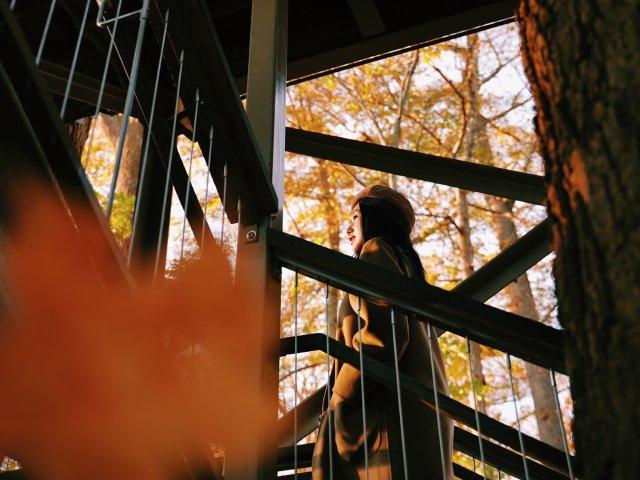 旅行周记  🍁 秋天的长木公园⛲️