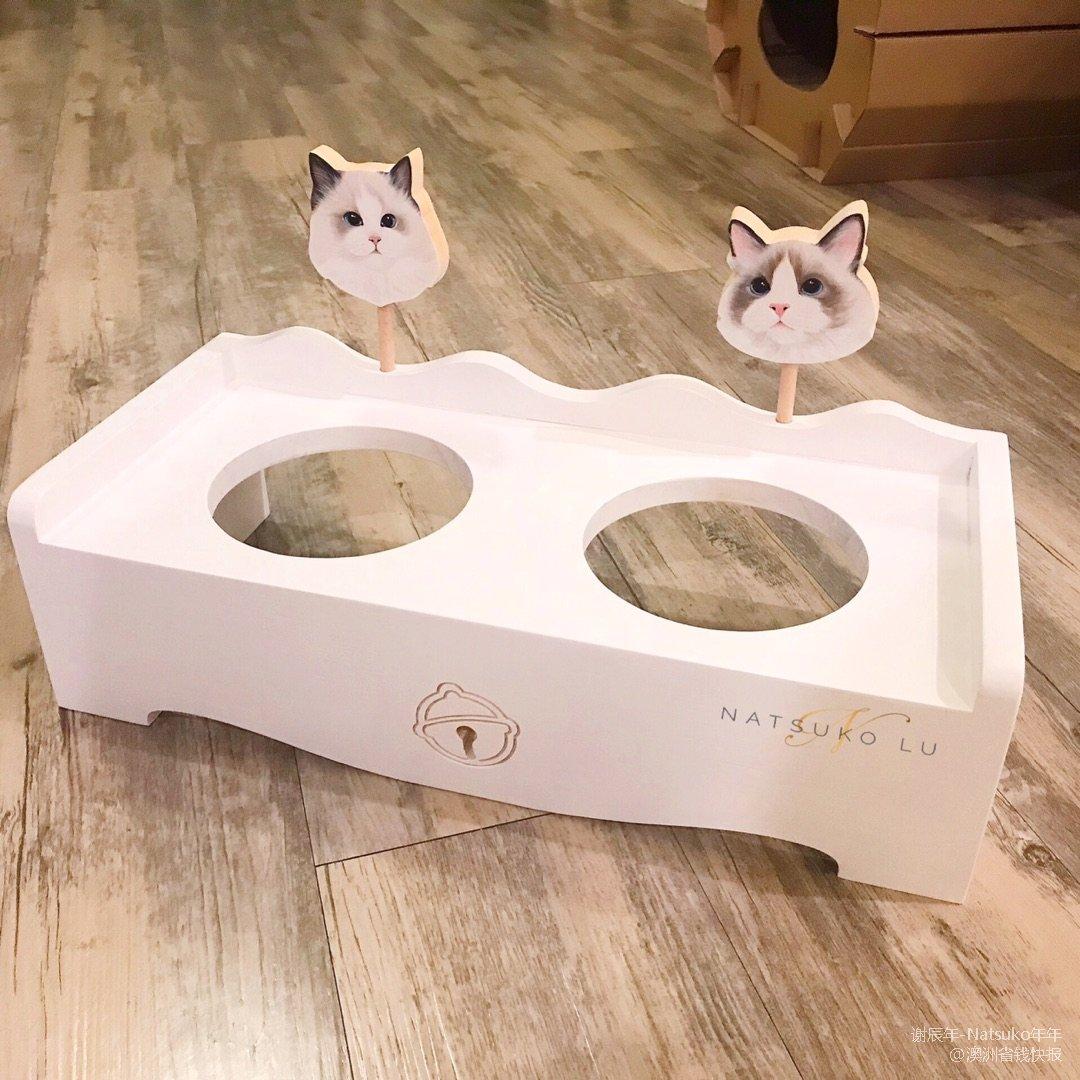 淘宝买什么:猫咪餐桌+仙女逗猫棒