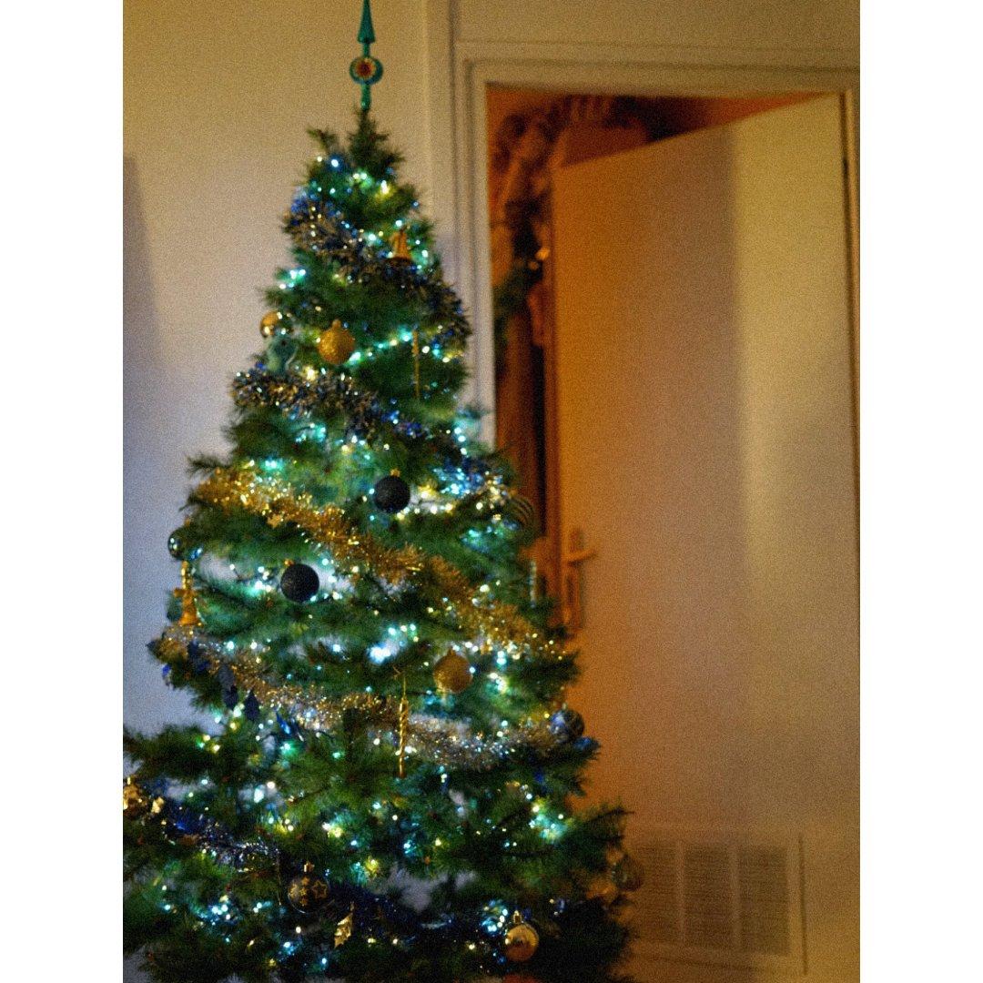 2020圣诞树🎄