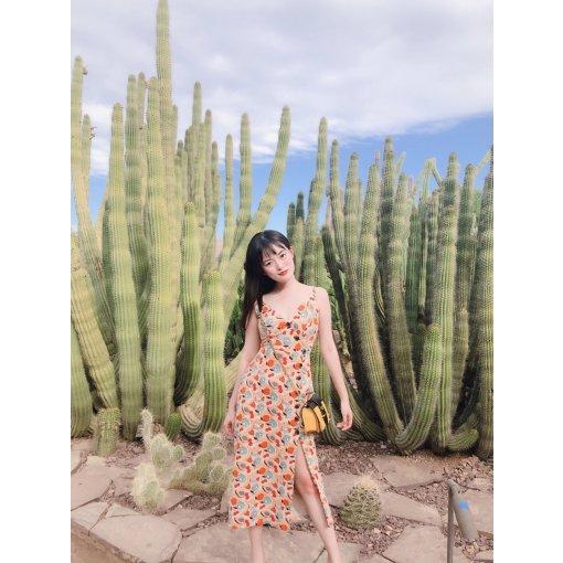 Phoenix Arizona | 景点推荐