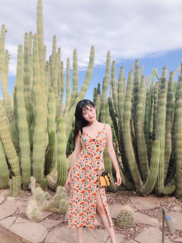 Phoenix Arizona |...