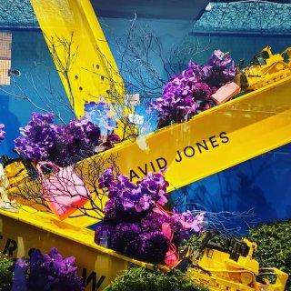 悉尼宝宝们的福利~David Jones...