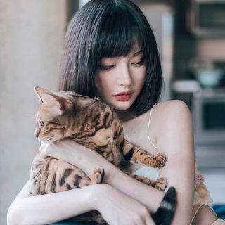 宅家拍写真:0成本,只需要阳光和一只猫🐱...