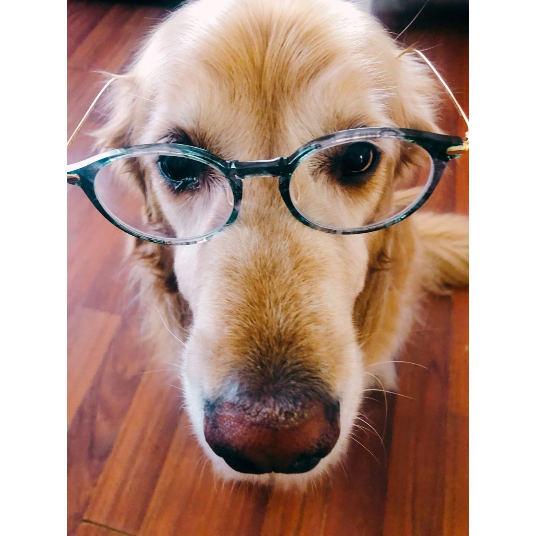 Popeye的眼镜摊