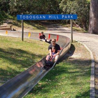 悉尼周边游Toboggan Hill P...
