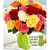 $29.9924 Rainbow Mother's Day Roses with FREE Green Vase