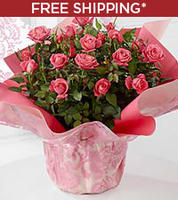 Free shipping on gift or get 25% Offsitewide @ FTD.com