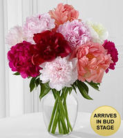 In Full Bloom Peony Bouquet - 10 Stems - VASE INCLUDED