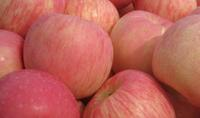 $1.50 per lb50% Off Organic Fuji Apple from Olive Seven Farms @ GrubMarket