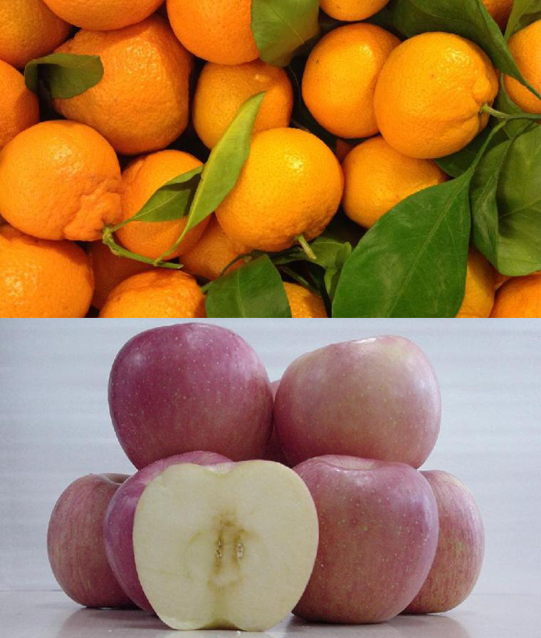 From $1.99/lbs30% Off Organic Fuji Apples and Satsuma Mandarins from Olive Seven Farms @ GrubMarket
