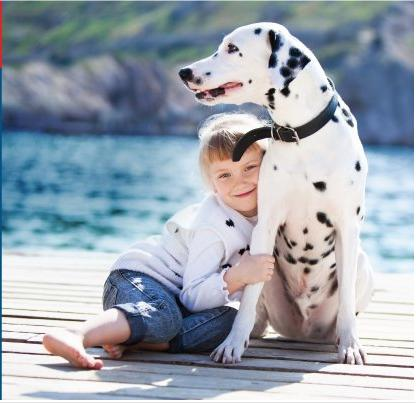 $10 off $20All Items @ Only Natural Pet