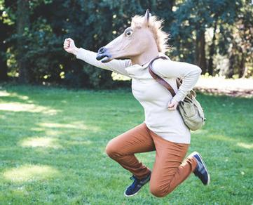 $19 Accoutrements Horse Head Mask