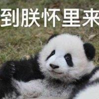Lizabeth_Zhang