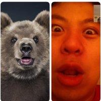 松弛的熊熊