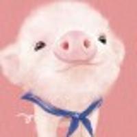 家有猪猪初养成