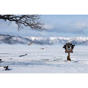 札幌,慢慢听雪落下的声音~斯图加特往返札幌航班低至477欧,包含行李。