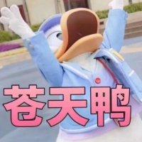 丑小鸭变丑大鸭