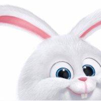 栗子_bunny