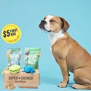 $5 First BoxExtended: National Dog Day Special Offer @ Super Chewer by BarkBox