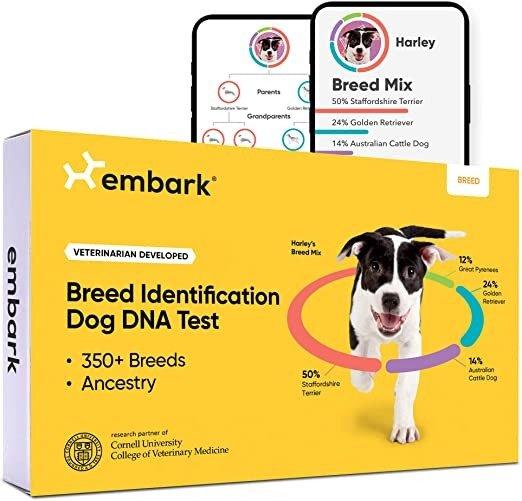 狗DNA测试