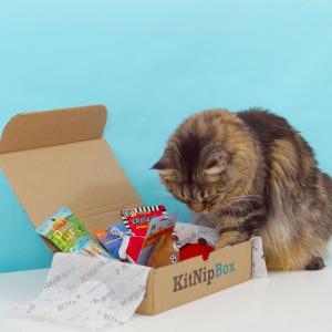 限今天:KitNipBox 喵星人神秘订阅礼盒 多种主题套装可选
