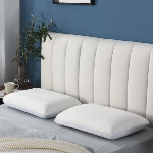 10% OffDealmoon Exclusive: Lifease Selected Pillows on Sale