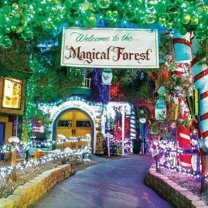 拉斯维加斯 Opportunity Village魔法森林