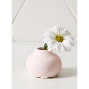 装饰小花+瓶