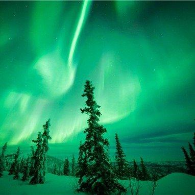 <5天>【阿拉斯加北极光半自由行】2次小木屋观测极光、飞跃北极圈极光追踪、珍娜温泉、狗拉雪橇、冰钓+赠送北极光观测证书