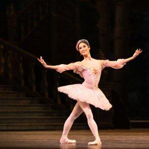 大都会歌剧院本周剧目更新全球著名歌剧院线上资源免费看,英国皇家歌剧院、柏林爱乐等