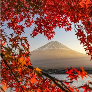 Round Trip As Low As $539United Airlines Boston to Tokyo Japan Airfares On Sale