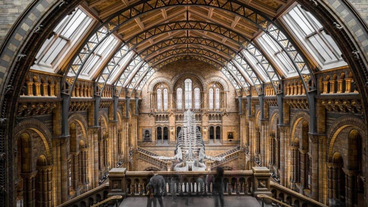 伦敦博物馆推荐   9大必打卡的伦敦博物馆超全指南!各大博物馆的镇馆之宝是什么?