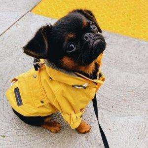 Max-BoneTalon Raincoat