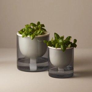 Oui罗勒-自动浇水玻璃花盆