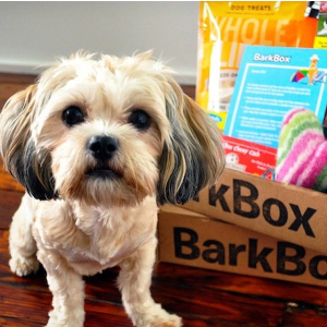$10 First BoxNational Puppy Day Gift @ Barkbox