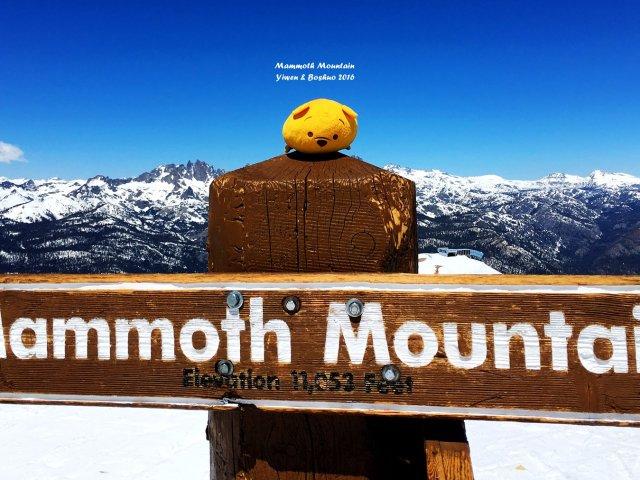 【滑雪】8月还能滑雪的加州Mamm...