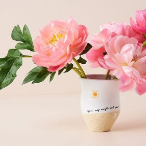Anthropologie装饰花瓶