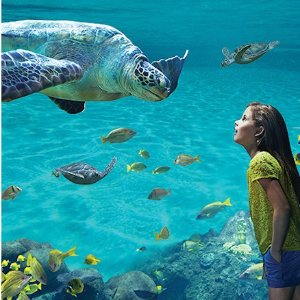 Save Up to $48 on 2 Park Ticket Summer Fun Flash Sale @ Sea World